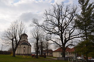 Cvetojevac Village in Šumadija, Serbia