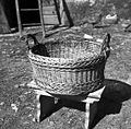 """""""Jerbas"""" iz obeljene beke, Manče 1958 (cropped).jpg"""