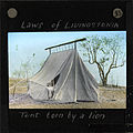"""Tent Torn by a Lion"", Malawi, (s.d.) (imp-cswc-GB-237-CSWC47-LS5-1-033).jpg"