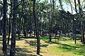 (7) Wikiconferencia Uruguay 2015.jpg