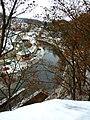 Český Krumlov, pohled na stromy a meandr Vltavy.jpg
