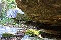 Şelale civarı düzorman - panoramio.jpg