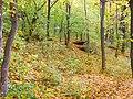 Вінничина, Муровані Курилівці парк Жван 30.jpg