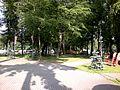 Гурьевск - panoramio (1).jpg
