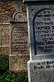 Земунско гробље на Гардошу 17.jpg