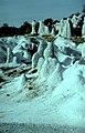 Каменна сватба (Скални гъби) - Зимзелен - Природна забележителност - PZ132 No7.jpg