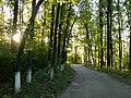 Національний природний парк «Гетьманський».jpg