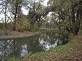 Поворот реки - panoramio (3).jpg