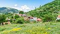 Поглед на селото Близанци (1).jpg