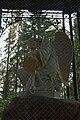 Скорбящий Ангел с якорем и медальоном через вуаль защитной сетки.jpg