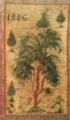 Тканевая обложка альбома Натаван с ее вышивкой. 1886 год. Шуша.png