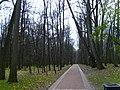 Царицыно. Осенняя аллея - 04-11-2007г. - panoramio.jpg