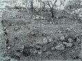 בית קברות 06.jpg