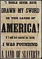 """I would never have drawn my sword in the cause of America! If I could have conceived that thereby I was founding a land of slavery! (7645380124).jpg"