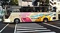 中国バス「リードライナー」(専用塗装車両).JPG