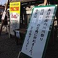 庄内川で役者が登った竹が南東の方角に倒れたので今年は吉.jpg