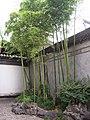 胡雪岩故居2 - panoramio.jpg