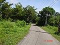 虎山農場 - panoramio.jpg