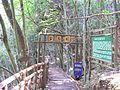 铜铃山森林公园生态园 - panoramio.jpg