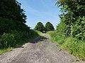 -2021-06-15 Farm track off Goulders Lane, Felmingham.jpg