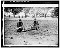 - 19 American Red (Cross) Allentown camp; Red Cross dogs & stretcher bearers LCCN2016824643.jpg