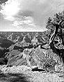 01261 Grand Canyon Yaki Point (7945657430).jpg