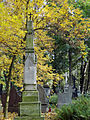 041012 Orthodox cemetery in Wola - 17.jpg