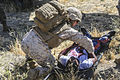 11th MEU practices casualty evacuation 140615-M-vz997-725.jpg