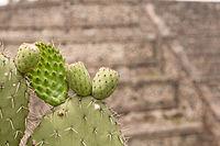 15-07-20-Teotihuacan-by-RalfR-N3S 9424.jpg