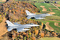 176th Fighter Squadron - F-16s - 2008.jpg