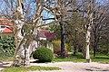 20050421026DR Seußlitz (Nünchritz) Schloßpark Seußlitz.jpg