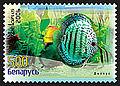 2006. Stamp of Belarus 0670.jpg