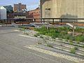 2009 Mai High Line Park 03.jpg