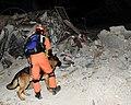 2010년 중앙119구조단 아이티 지진 국제출동100117 아이티 중앙은행 수색활동 (32).jpg