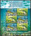 2011. Stamp of Belarus 24-2011-28-07-list-vse.jpg
