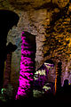 20120410 YD cave 0001 04.jpg