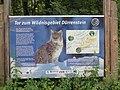 2017-07-23 (53) Steinbachtal at Dürrenstein (Ybbstaler Alpen).jpg