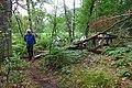 2019-08-17 Hike Hardter Wald. Reader-28.jpg
