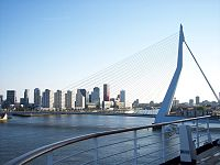 206 Rotterdam bridge.jpg