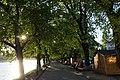 21-101-5013 Липова алея.jpg