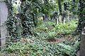 2362viki Cmentarz Żydowski na Ślężnej. Barbara Maliszewska.jpg