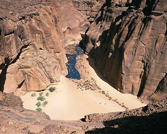Ennedi Plateau - Camels at a waterhole in a canyon in Ennedi