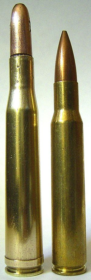 .300 H&H Magnum - Image: 300HHMag And 30 06