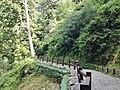336, Taiwan, 桃園市復興區華陵里 - panoramio (10).jpg