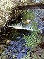 35-211-5004 Казавчинські скелі Лютинська 101.jpg
