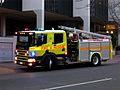 ACTFB Scania P94 09 e.jpg