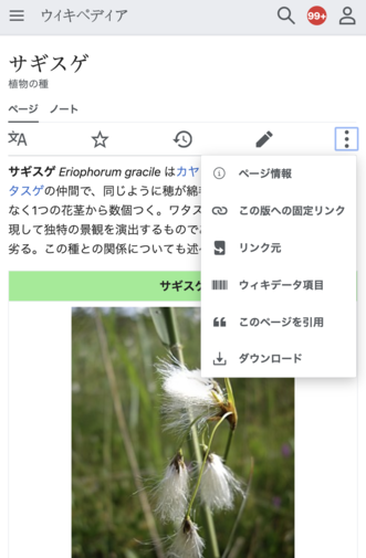 Screenshot of the Advanced mobile contributions overflow menu in Japanese Wikipedia