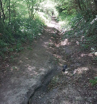 Avenue Verte - Section of NCN Route 21 near A26 at Eridge in poor condition