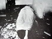 The murdered body of Abby Borden, Lizzie Borden's step-mother.