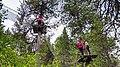 Abenteuerwald Saas-Fee.jpg